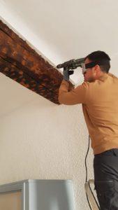 Entreprise traitement insectes du bois